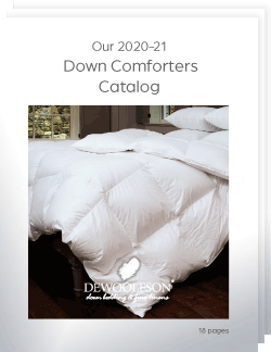 Our 2020-21 Down Comforters Catalog