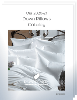 Our 2020-21 Down Pillows Catalog